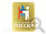"""Нагрудный знак """"Многонациональная Россия"""""""